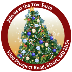 Join us for Choose and Cut Christmas Trees at our Northern Harford County Christmas Tree Farm!